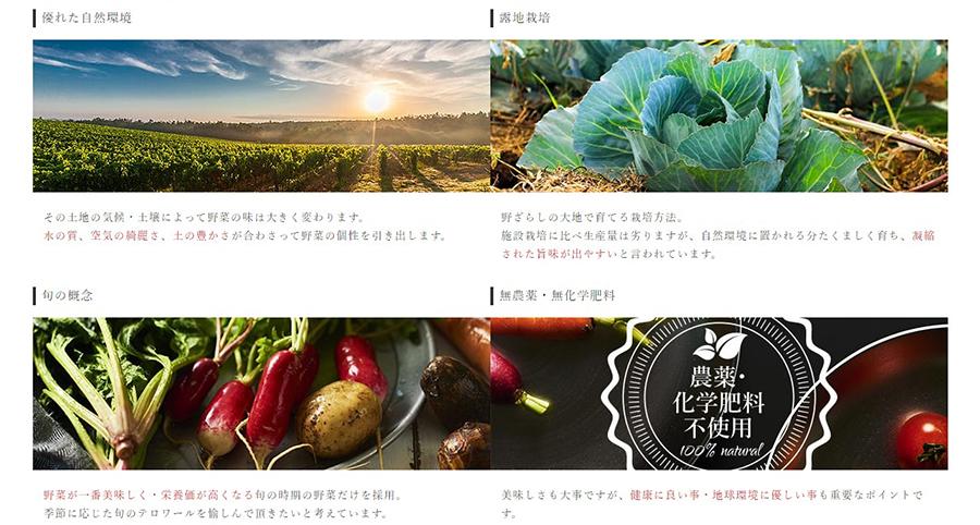 露地栽培、無農薬・無化学肥料にこだわった「テロワール野菜」