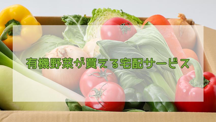 有機野菜が買える宅配サービス