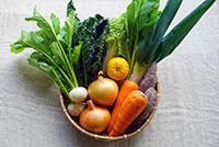 旬のお野菜セット Sサイズ